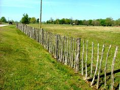 Wonderful barbed wire fence, made as they were decades ago. Saline County AR.