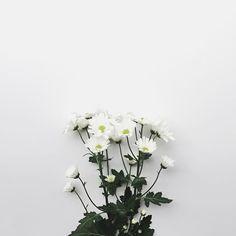 "1,147 Suka, 9 Komentar - Daisuke Yasumura (@whitesque) di Instagram: ""Let the beautiful day begin. #morningslikethese"""