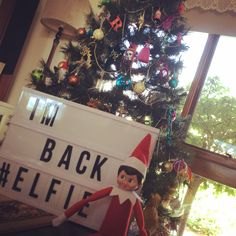 He's back!  #elfie #elfonashelf