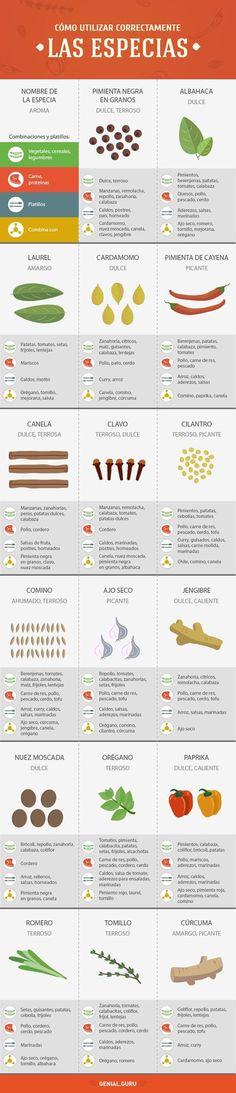 guía de especias y condimentos