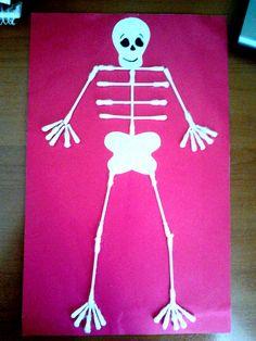 İskelet/Skeleton Okul Öncesi/Kindergarten