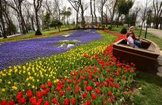 #Istanbul #Tulips #Festival