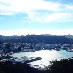 #Wellington #welling