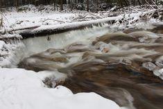 Schnee und Eis - Winterimpressionen - Naturfoto