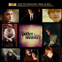 harry potter and albus dumbledore Harry Potter Ron Weasley, Harry Potter Magic, Ron And Harry, Albus Dumbledore, Fantastic Beasts, Best Friends, Magic Wands, Fans, Google Search
