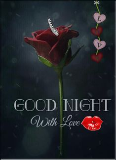 Good Night Messages, Good Night Wishes, Good Night Quotes, Lovely Good Night, Good Night Sweet Dreams, Good Evening Greetings, Good Knight, Gd Morning, Evening Quotes