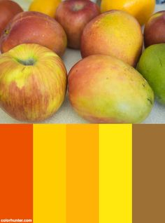 P5090063.sm+Color+Scheme
