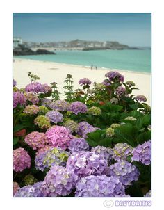 St Ives, Cornwall England