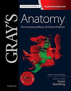Gray's Anatomy: The Anatomical Basis of Clinical Practice 41th Edition Pdf Download For Free - By Susan Standring PhD  DSc Ebooks - Smtebooks.com