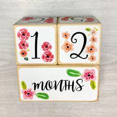 Baby Girl - Baby Age Blocks - Baby Milestone Blocks - Baby Photo Props - Monthly Baby Blocks - Baby Accessories - Baby Gift - Nursery Decor by StickEmUpBaby on Etsy https://www.etsy.com/listing/456245882/baby-girl-baby-age-blocks-baby-milestone