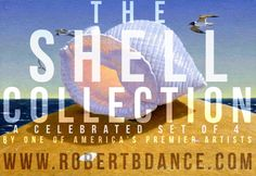 """Take 17% OFF the Open Edition of Robert Dance's new print set """"The Shell Collection"""". A wonderful #gift for any #shell Enthusiast this #holiday #season! To order: http://stuartdance.com/shellcollectionSSD17.html"""