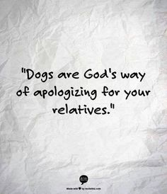 Dogs are God's way of apologizing for your relatives!  No, really!