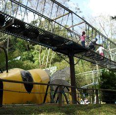 Cidade das Abelhas - diversão, cultura e entretenimento educativo para a criançada em SP