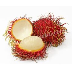 The carbohydrate and protein contents of rambutan help to increase energy and prevent bloating