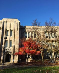 Fall day from our friends at Butler  @butleru - Last day of November still looks and feels like autumn around campus. #butleru  #goviewyou