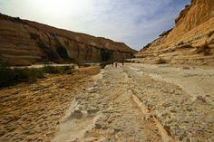 https://flic.kr/p/egxB73   The way to Ein Aqev - Negev desert - Israel