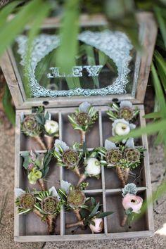 Megan's Pennsylvania Wedding - Succulents boutineers
