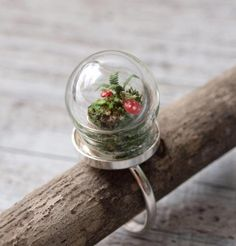 Innovative Nature-Inspired Jewelry - Fashion Fill