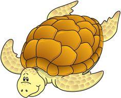 SEA_TURTLE.jpg (425×344)