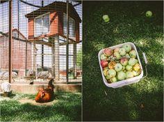 Mulberry Lane Barn Wedding Studio 29 Photography