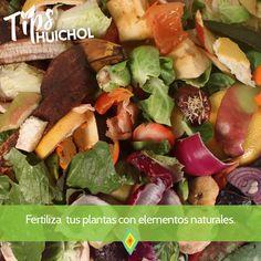 Los fertilizantes son nutrientes que las raíces de las plantas pueden absorber.