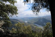 #river #riverdeepmountainhigh #nature #naturelovers #lategram #nofilter #galafura #douro #ilovedouro #portugal #portugalcomefeitos #portugalnumdia #portugal_em_fotos #ig_portugal #igersportugal #portugaldenorteasul #unlimitedportugal #vsco #vscocam by joanapereira14