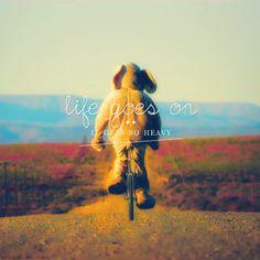 ...the wheel breaks the butterflies...