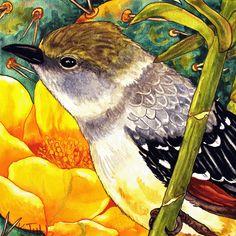 Arizona Flycatcher