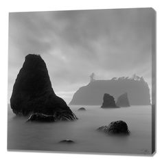 Ruby I by Moises Levy Photographic Print on Wrapped Canvas