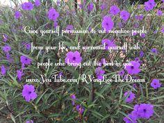 Happy Monday Y'all 😎 #Monday #purpleflowers #happiness #traveler #wonderlust