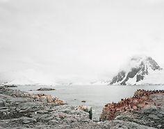 antarctica_3