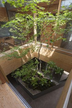 Located in the center of Fukuyama City, Japan, and designed by UID Architects, the Courthouse in the City is a uniquely designed urban home that features an inner tree garden. Japan Architecture, Green Architecture, Landscape Architecture, Arch Interior, Interior Garden, Japanese Interior Design, Home Interior Design, Architecture Extension, Area Urbana