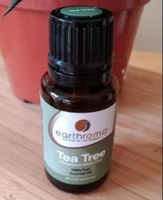 tee tree oil uses remedies Skin Tags Home Remedies, Natural Home Remedies, Essential Oils For Skin, Tea Tree Essential Oil, Melaleuca, Huile Tea Tree, Remove Skin Tags Naturally, Tea Tree Oil Uses, Dinner On A Budget