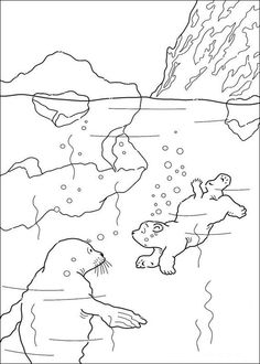 lars the little polar bear coloring pages 12 - Arctic Colouring Pages
