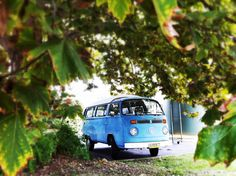 Kombi spotted lurking in the bushes     :-{b>