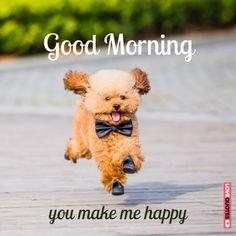 Good morning. You make me happy!
