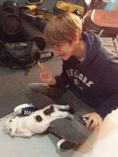 Baekhyun playing with a sleepy puppy