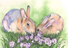 Rabbits print of watercolour painting  R8116 5 by 7 size