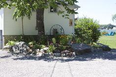 Rock garden in front of The Boathouse 2014 Boathouse, Rock, Garden, Plants, Landscape Rake, Stone, Garten, Flora, Rock Music