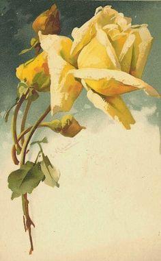Catherine Klein #art #casadoartista #watercolor