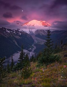 Climb Mount Rainier. Mount Rainier National Park, WA.