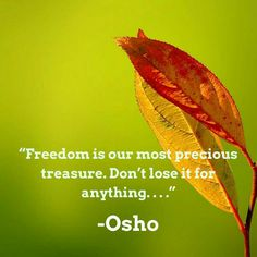 Freedom is our most precious treasure. Don't lose it for anything... Osho. Osho Quotes On Life, Spiritual Quotes, Positive Quotes, Gratitude Quotes, Wisdom Quotes, Uplifting Quotes, Inspirational Quotes, Motivational, Osho Love
