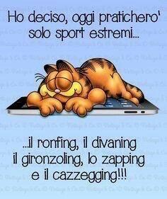Garfield e gli sport estremi :-)