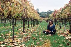 Stinson's daughter Tam got in a fight with her boyfriend Drake, so she took to the vineyard and contemplated the meaning of true love. #NorthBayLife
