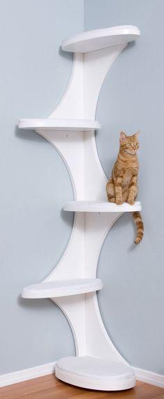 Katzen-Kletterwand Ideen: (The Refined Feline Catemporary Cat Corner in White: Pet Supplies) Source by wlkanja - Diy Cat Tree, Cool Cat Trees, Cat Towers, Cat Shelves, Cat Playground, Cat Room, Cat Condo, Pet Furniture, Modern Cat Furniture