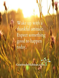 Expect something good to happen,  Visit us at: www.GratitudeHabitat.com