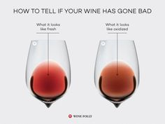 """How to Tell if Wine Has Gone Bad As a general rule, if a wine bottle is open for over a week it's probably gone \""""bad.\"""" Learn how the wine will change in terms of color, smell and taste."""", """"pinner"""": {""""username"""": """"winefolly"""", """"first_name"""": """"Wine Folly Wine Facts, Wine Chart, Different Types Of Wine, Wine Folly, Wine Education, Wine Tasting Party, Wine Guide, Wine Wednesday, Cooking Wine"""