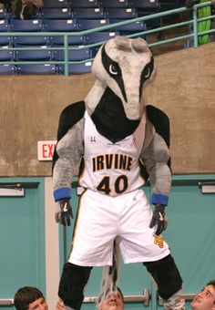 Peter the Anteater is the fierce mascot representing the University of California Irvine.