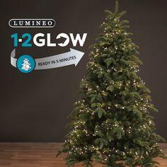 1 2 glow christmas tree lights fast and easy christmas tree light setup