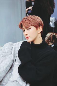 golden child joochan #joochan #joochancute #tagcute #goldenchild #kpopwallpaper #kpopaesthetic #jibeom #daeyeol #jangjun #youngtaek #seungmin #donghyun #seongyoon #bomin #jaehyun #jaeseok K Pop, Pentagon Wooseok, Pam Pam, Woollim Entertainment, Korean Boy Bands, Golden Child, Kids Wallpaper, Celebs, Celebrities